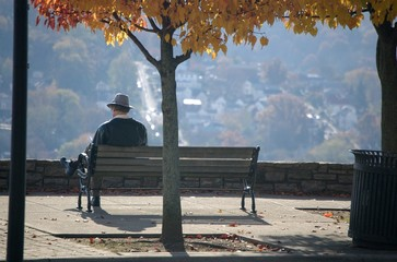 man reading on park bench