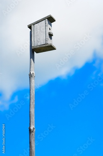 nestling box in the cloudy summer sky