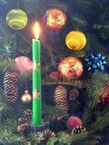 green burning candel on christmas tree poster