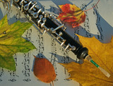 autumn: oboe and colorful leaves on music page poster