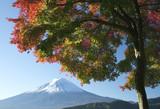 mount fuji in fall v poster