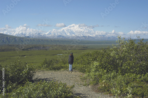 viewing mount mckinley