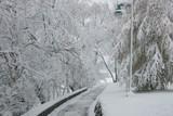 winter pathway poster