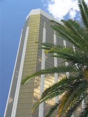 mandalay bay with palm tree