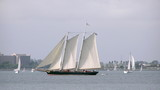 tall ship on bay poster