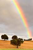 Fototapety rainbow