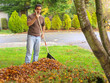 homeowner raking autumn leaves