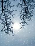 fantastic winter poster