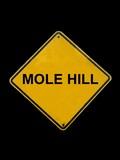 molehill  humor sign poster