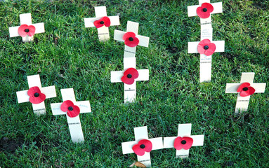 crosses and poppies