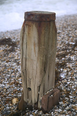groyne in pebble beach