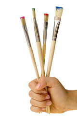 brushes in palm