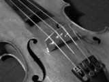 harmonie in form und klang