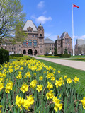 ontario parliament with daffodils, vertical poster