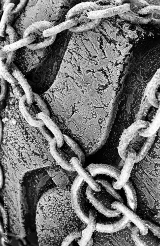 frozen chain