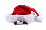 little mose and santa hat poster