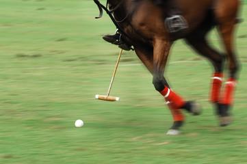 malaysia, kuala lumpur: equine polo tournament