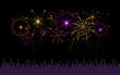 celebrating with fireworks