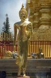 standing buddha in chiang mai poster
