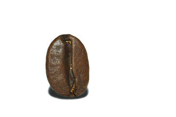 grain of coffee on a white background