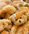 teddybears stockholm #2