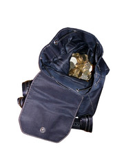 backpack of money