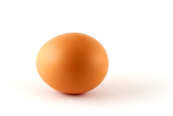 egg - isolated