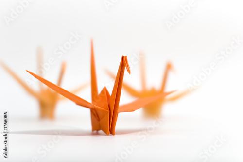 In de dag Zwaan origami birds