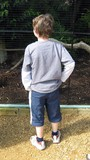 boy standing lookig at something.body language poster