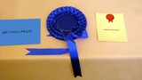 rossett.certificate of second prize/award.red seel poster