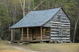 cades cove - carter shields cabin poster
