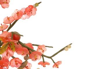 jade cherry blossom 7