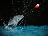 catching a big fish at night poster