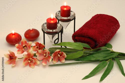 Leinwanddruck Bild orchid 3