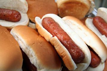 hotdogs ready to serve