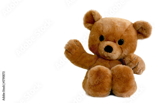 Leinwanddruck Bild brown teddy bear