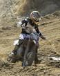 roleta: racer245