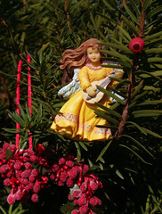 """""""christmas"""":  angel with lute ornament and berries"""