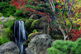 Fototapety japanese tea garden