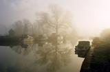 a misty sunrise on the river lee hertfordshire hom poster
