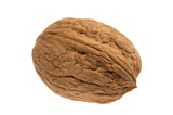 walnut isolated on the white poster