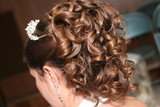 beautiful bride hair up do brown curls with tiara poster