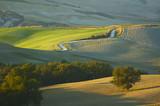 tuscan landscape poster