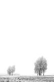 fog - 1829268
