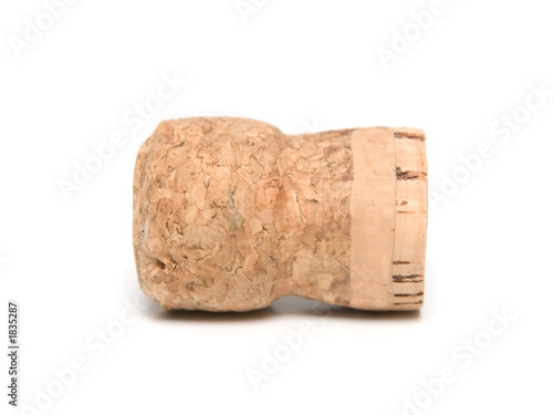 champagne bottle cork