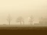 Fototapety fog