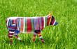 multicoloured cow