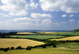 rolling english countryside the chilterns buckingh poster