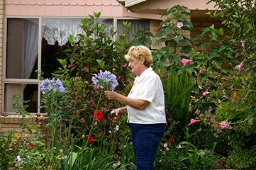 elderly cutting flowers.