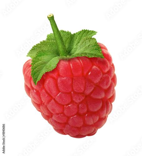 Aluminium Vruchten raspberry